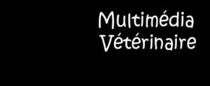 Cellule d'Appui à l'Enseignement basé sur le Multimédia (CAEM)